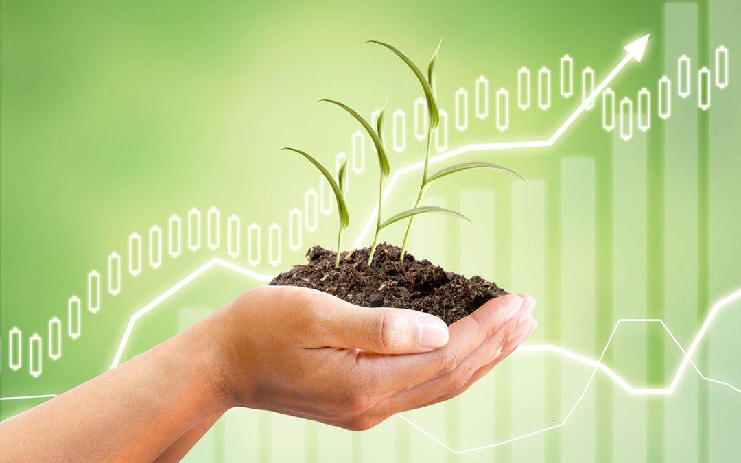 Kauf und Verkauf landwirtschaftlicher Flächen