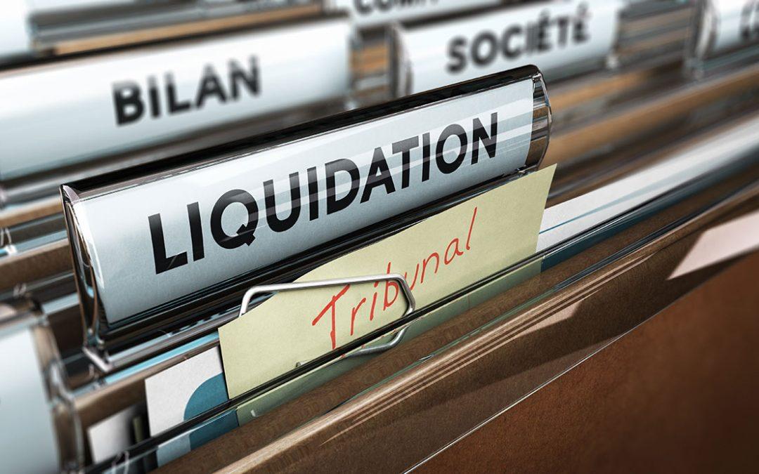 Auflösung und Liquidation der Gesellschaft